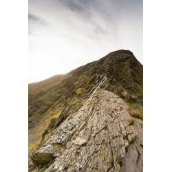 The Ridge V