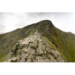 The Ridge V2