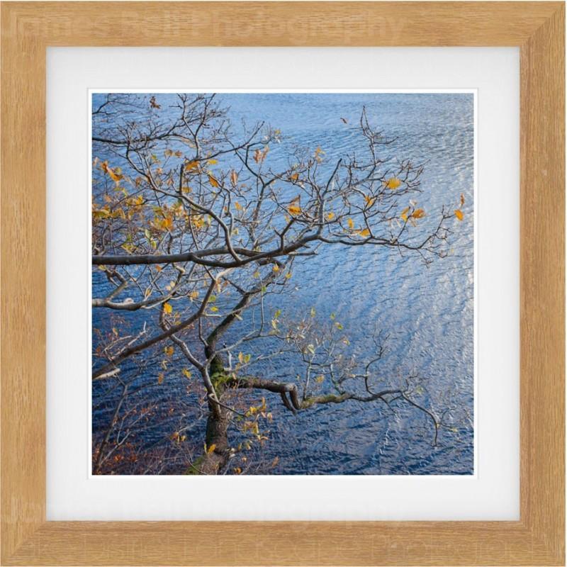 Autumn over Ullswater
