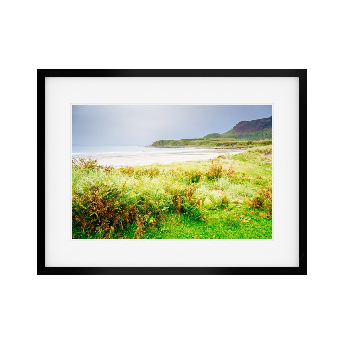 Laig Bay through the grass