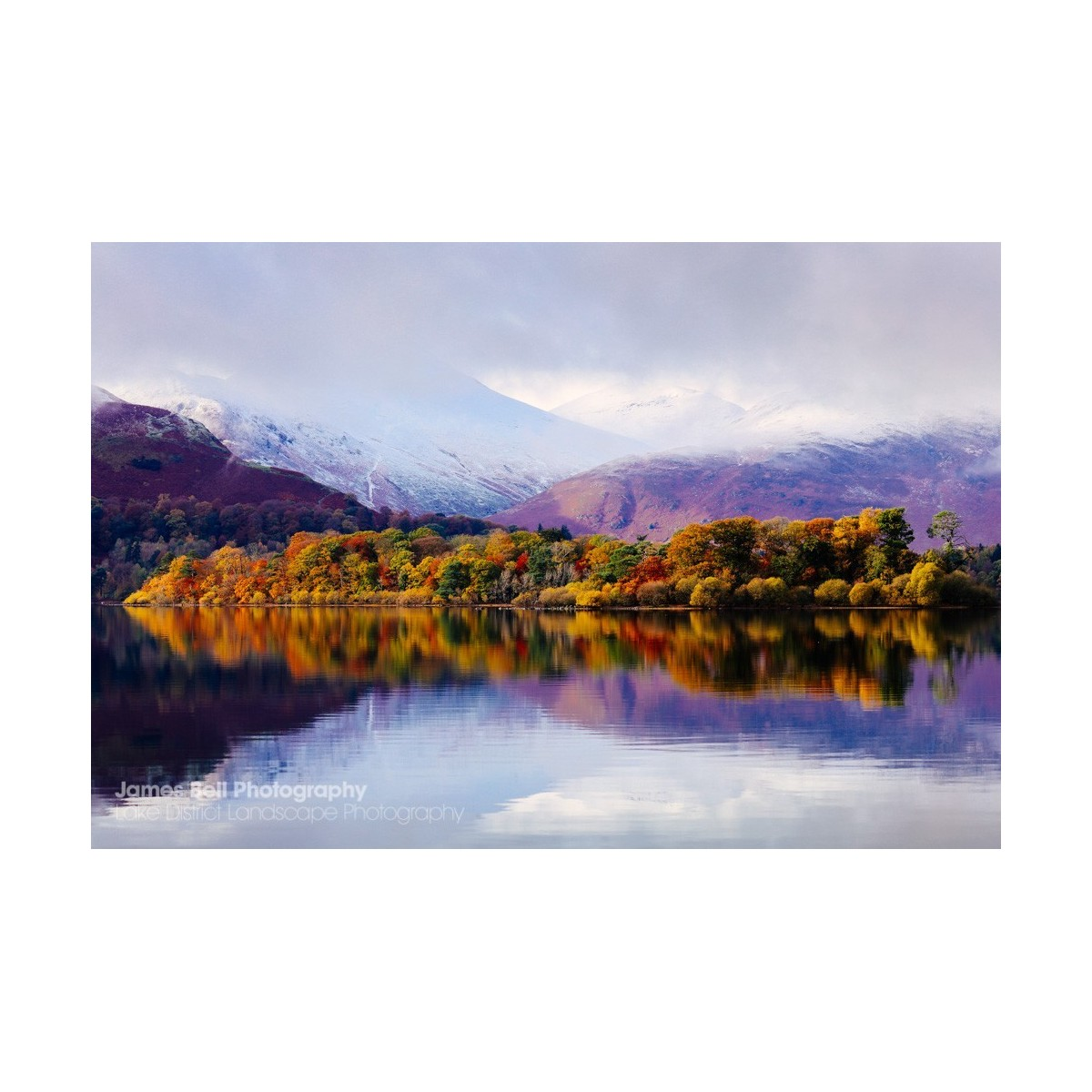 Borrowdale Autumn II