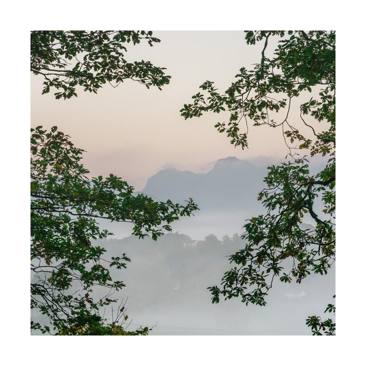 Langdale Misty Morning