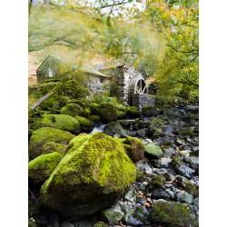 Borrowdale Mill