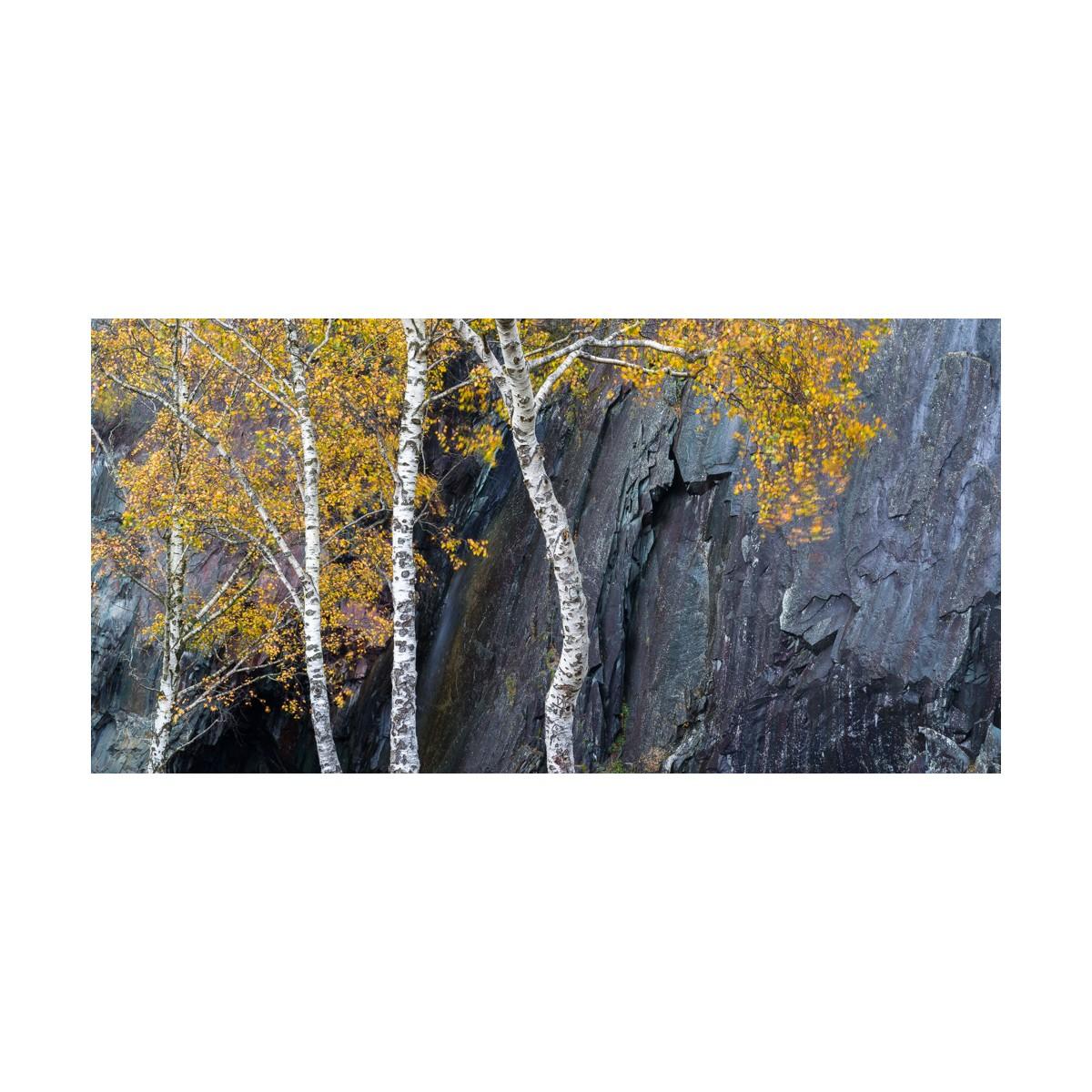 Quarry Contrasts