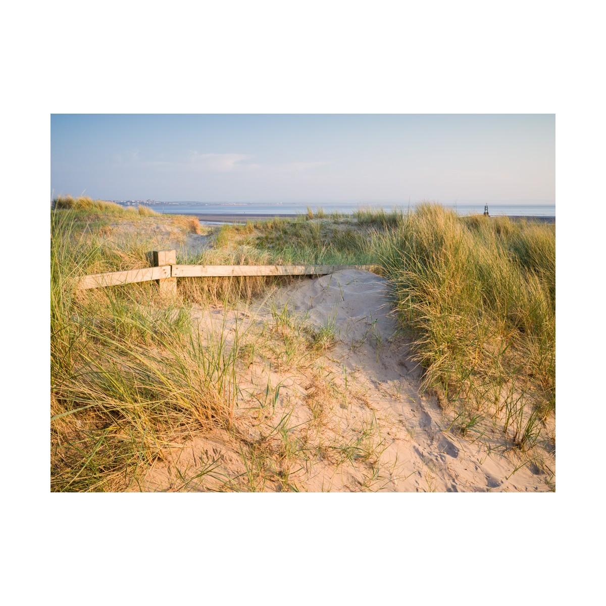 Crosby Dunes II