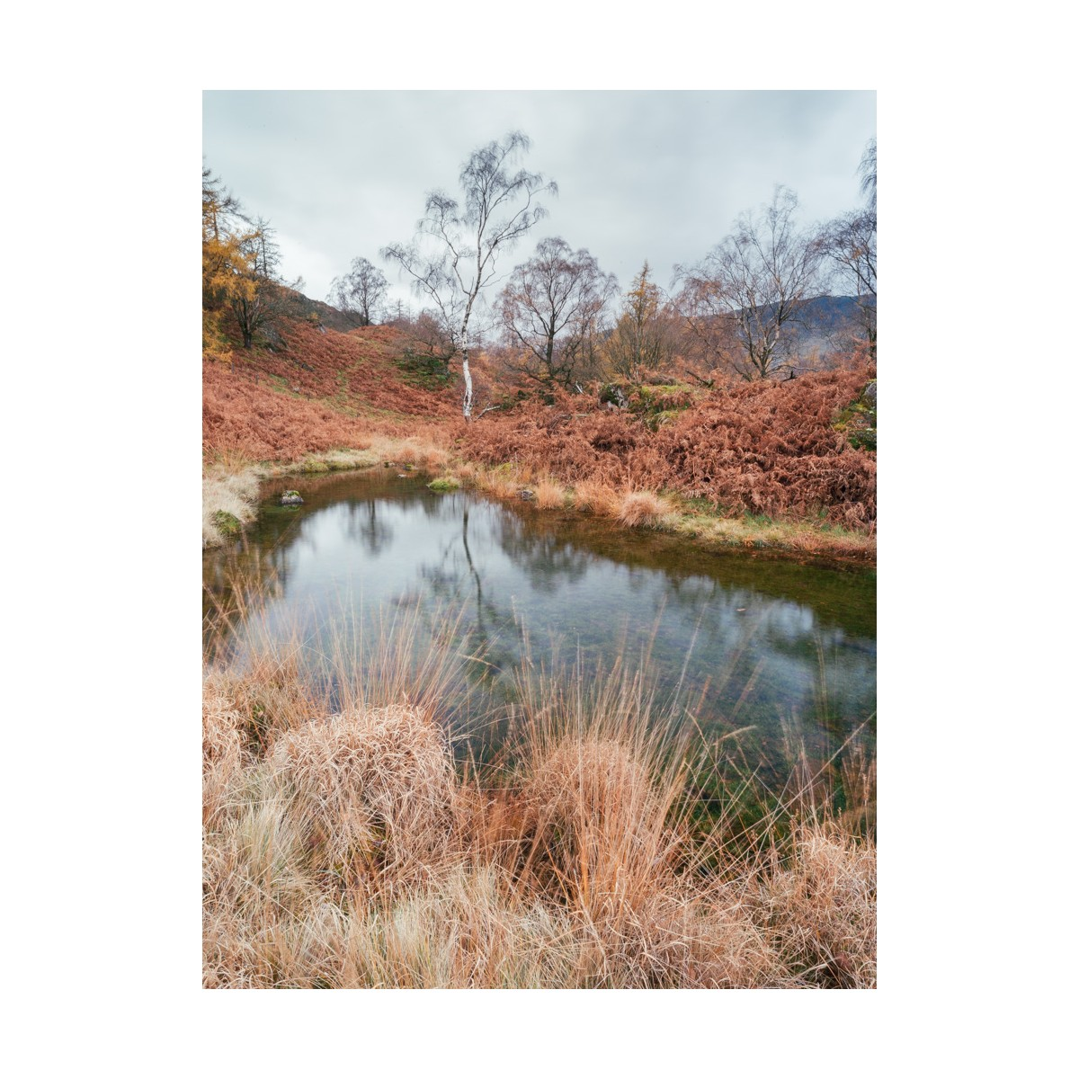 Holme Fell Tarn