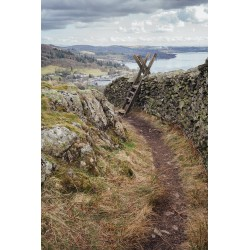 Loughrigg Path