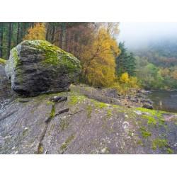 Thirlmere Autumn Scene