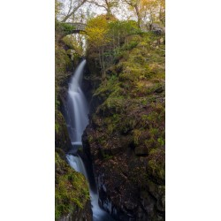 Aira Force Tall