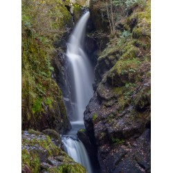 Aira Force Detail