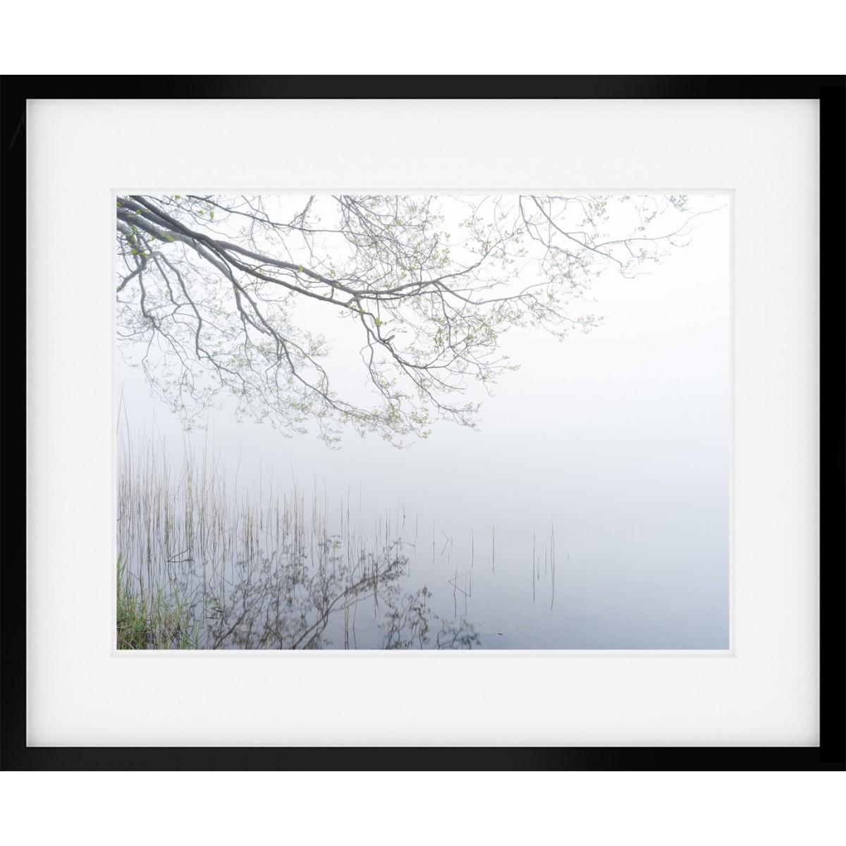 Grasmere Mist Framed Print