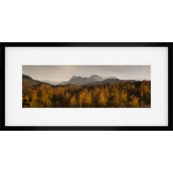 Tarn Hows View Framed Print