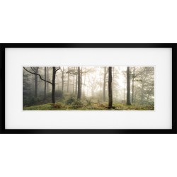 Grasmere Morning Mist Framed Print