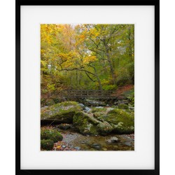 Stockghyll Autumn Portrait Framed Print