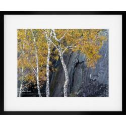 Quarry Contrasts II framed print