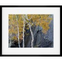 Quarry Contrasts II framed print