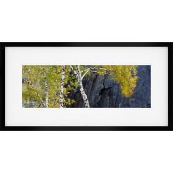 Slaters Autumn framed print