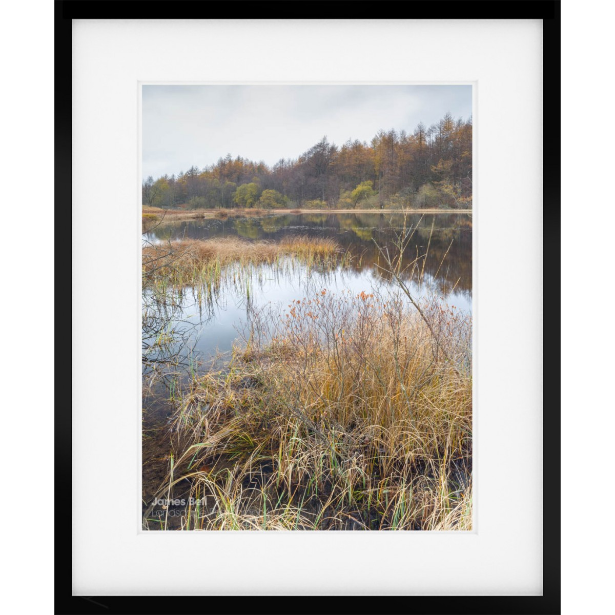 Wharton Tarn framed print