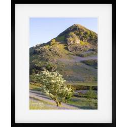 Rannerdale Knotts framed print