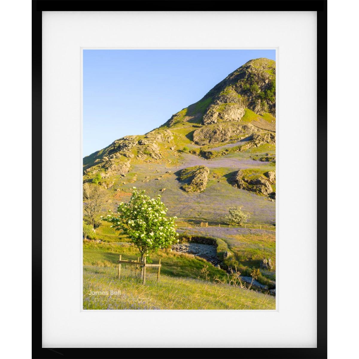 Rannerdale Knotts II frames print