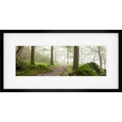 Deer Live Here framed print