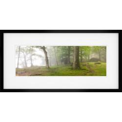 Woodlands Edge framed print