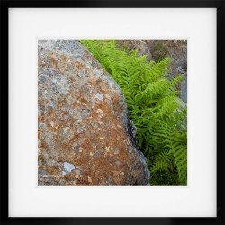 Honister Details framed print
