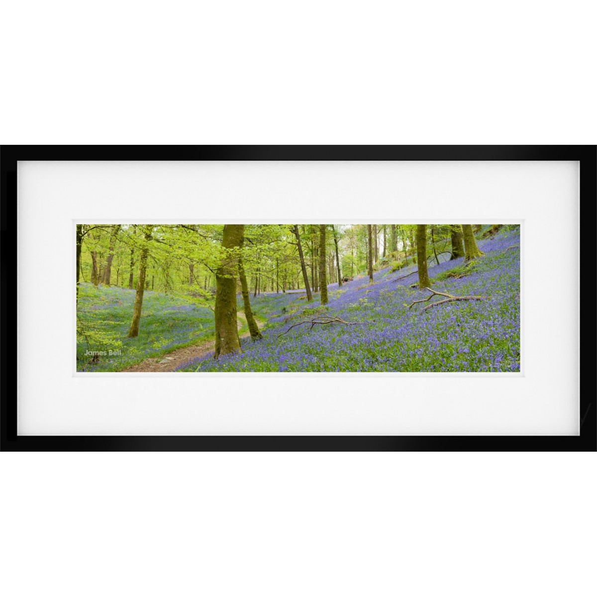 Lake District Bluebell Vista Framed Print