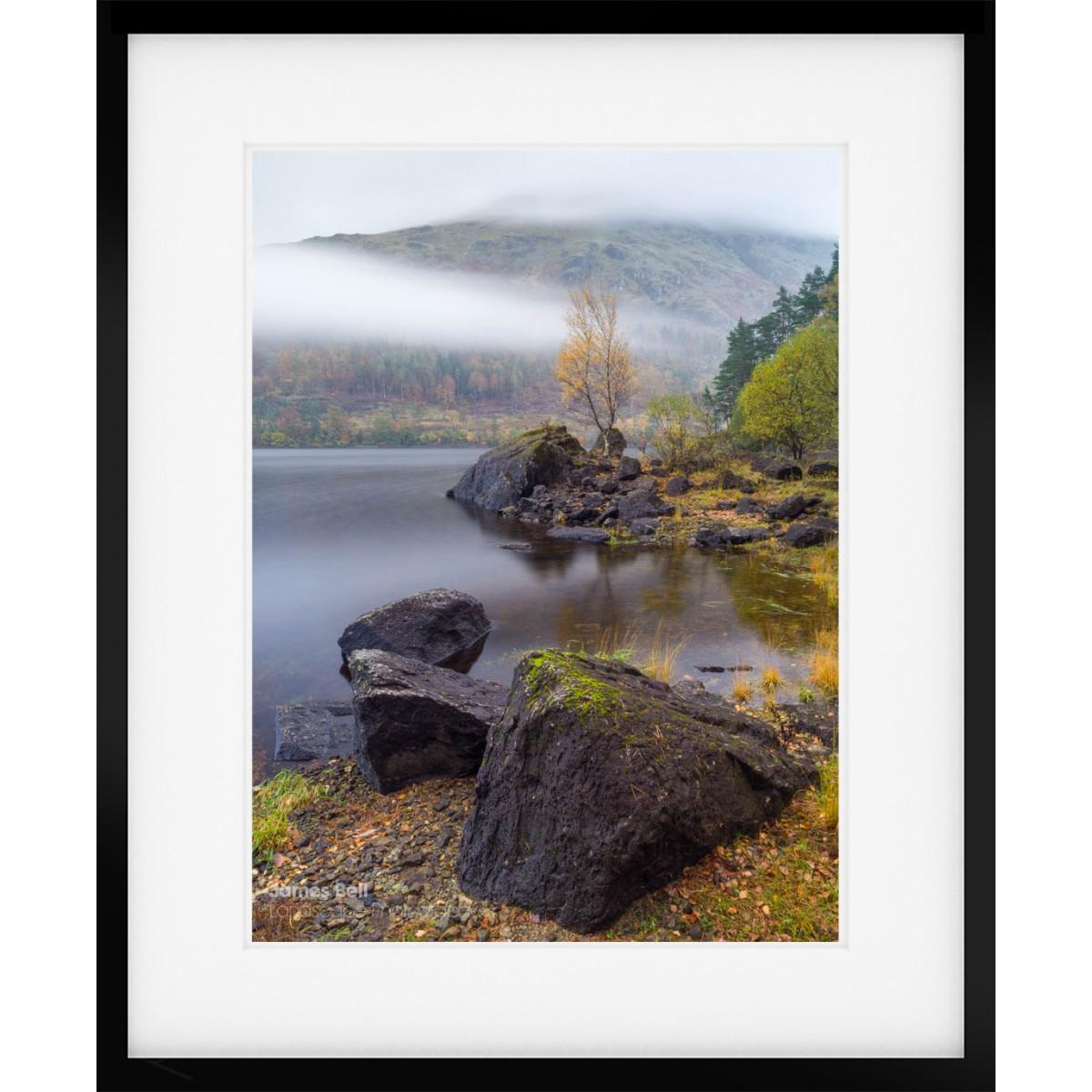 Thirlmere Tree framed print