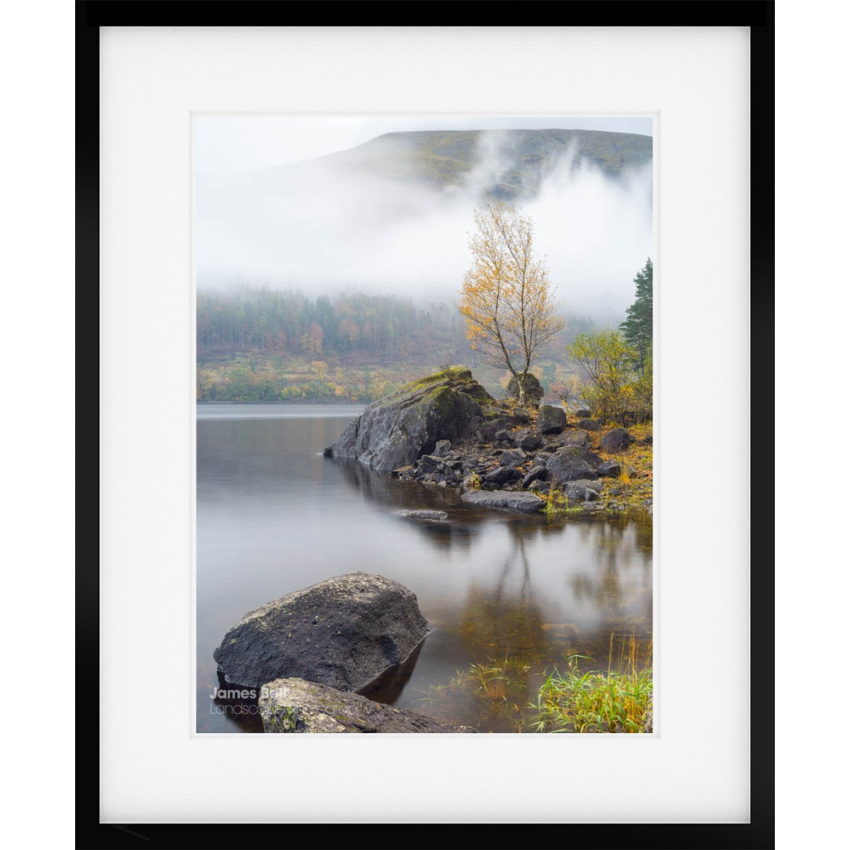 Thirlmere Autumn Lone Tree Framed Print
