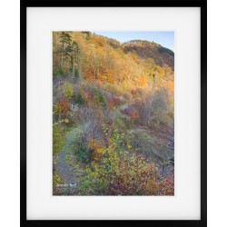 Thirlmere Autumn Explosion framed print