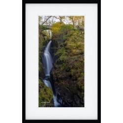 Aira Force Tall framed print