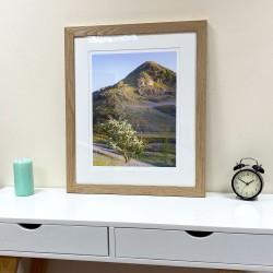 Rannerdale Knotts Bluebells Oak framed print