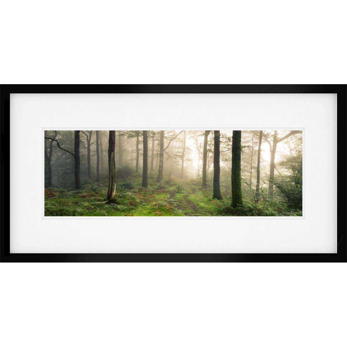 Grasmere Woodland Sunrise framed print