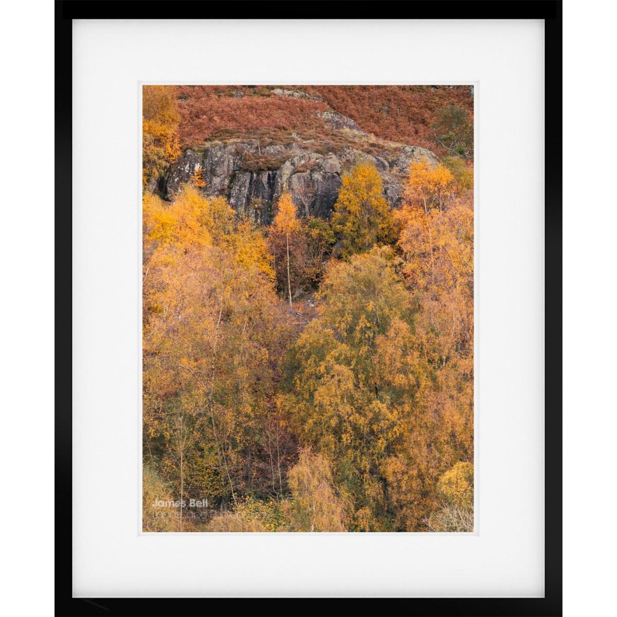 Gowbarrow Park Autumn framed print