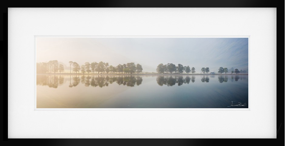 Butter mere Print for Sale