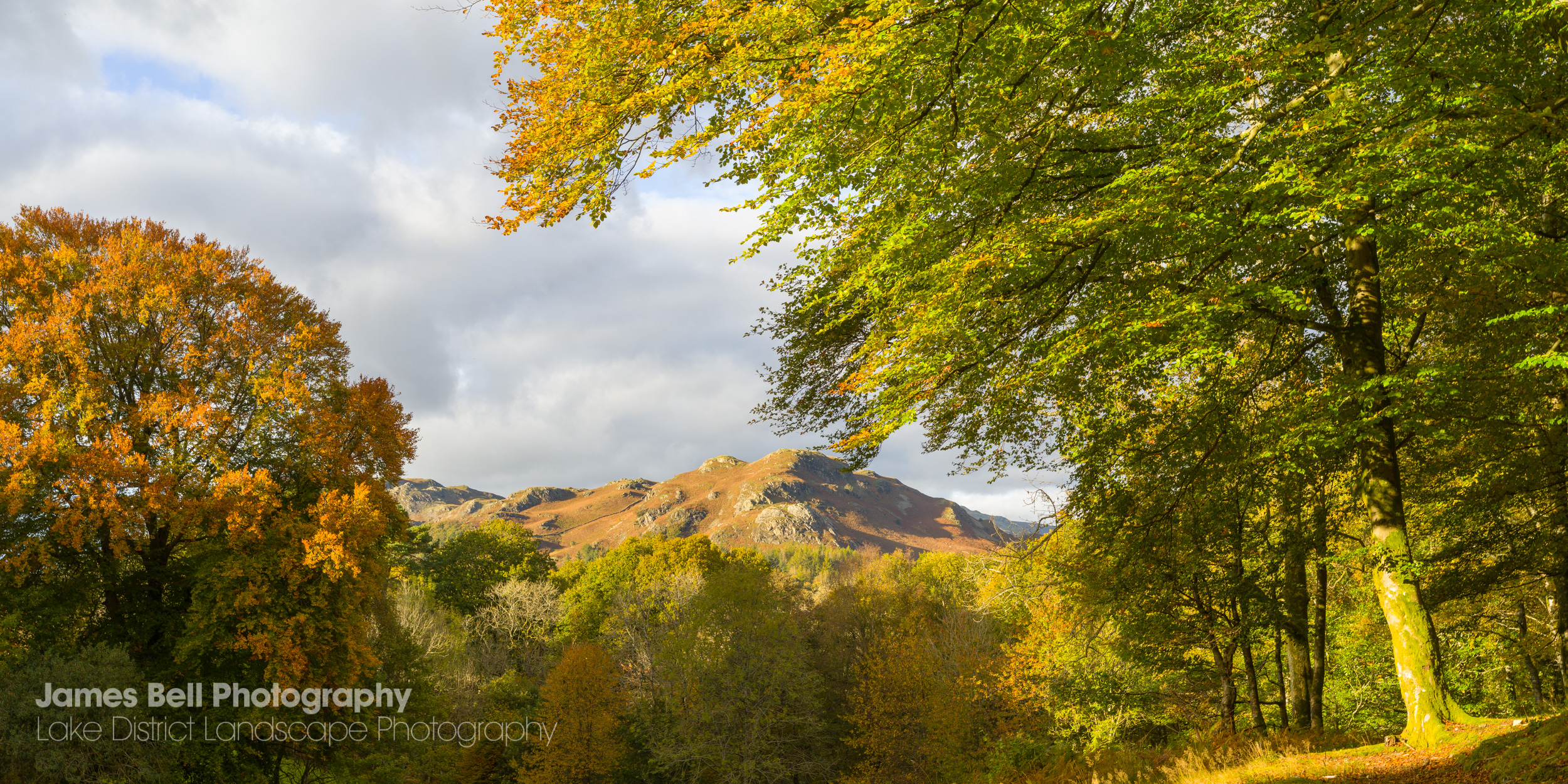 Autumn at Skelwith Fold in the Lake District