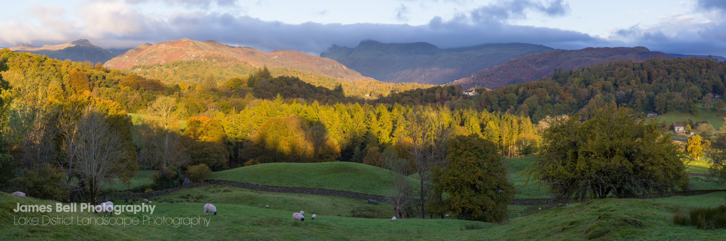 Autumn from Skelwith Fold