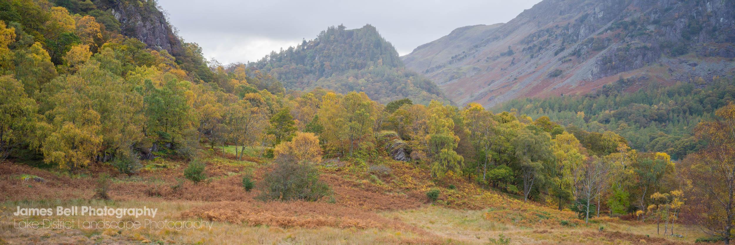 Borrowdale Autumn Landscape Print