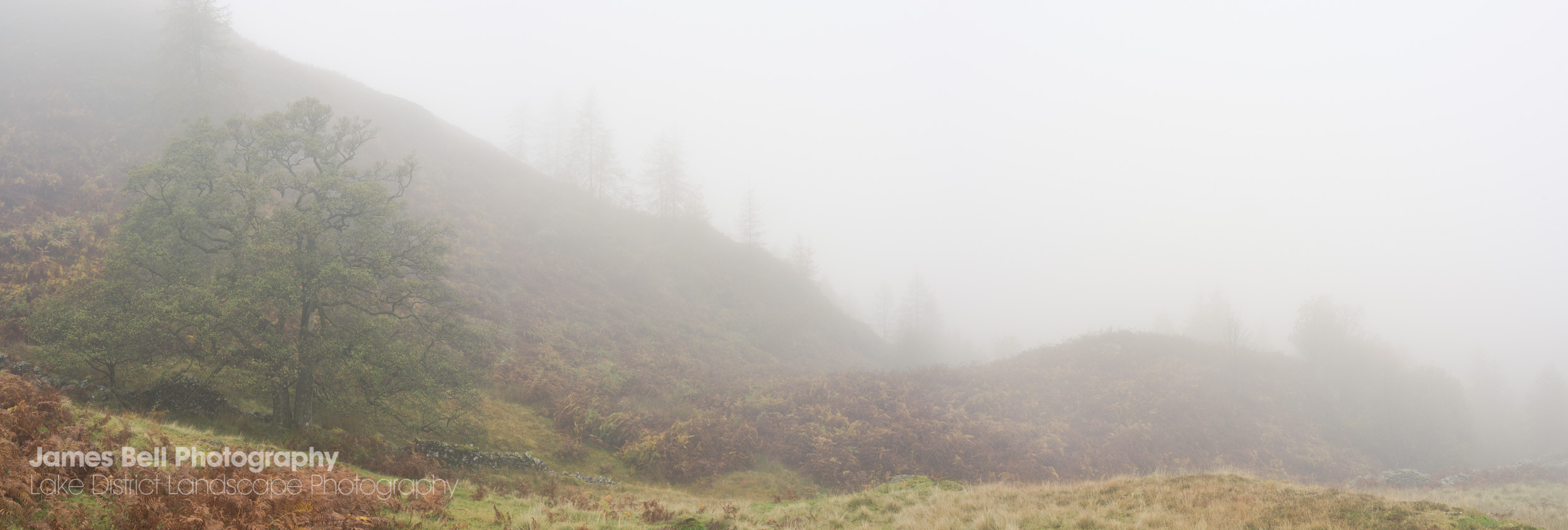 Skelwith in the Mist