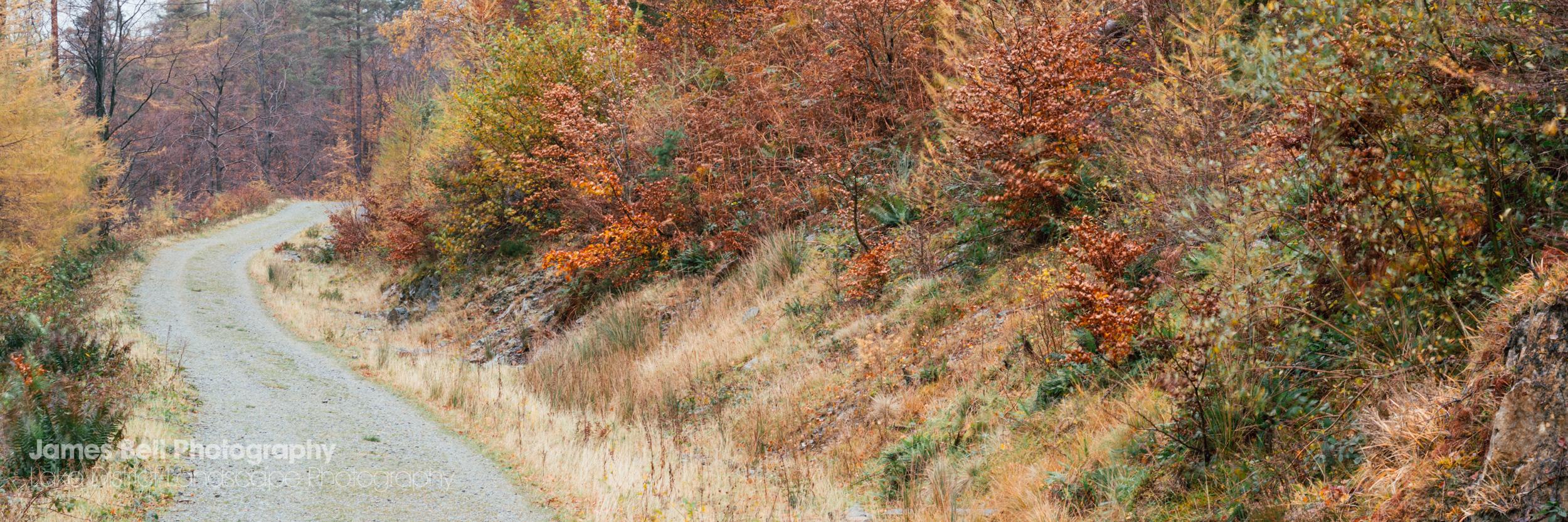 Autumn above Thirlmere